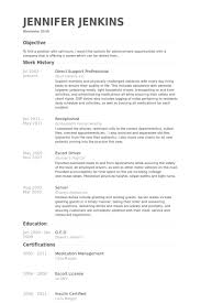 Direct Support Professional Resume Example