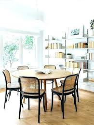 Cane Back Dining Chairs White Best Ideas On Furniture