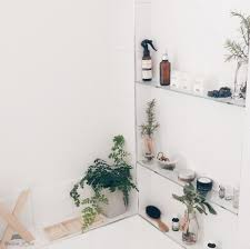 Plants For Bathroom Feng Shui by Bathroom Design Gorgeous Indoor Plants For Bathroom Decorating