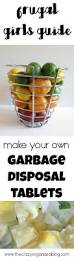 Garbage Disposal Backing Up Into 2nd Sink by Best 20 Garbage Disposal Smell Ideas On Pinterest Garbage