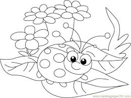 Ladybug Sit Flowers Coloring Page