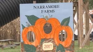 Heather Farms Pumpkin Patch by Pumpkin Patch And Corn Maze Become Roane County Attraction