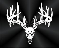 Deer Skull Decals Rack Car Truck Wall Vinyl Window Kc Vinyl Decals Graphics Signs Banners Custom Nice Buck Browning Deer Hunting Decal Hunter Head With Name Car Commander Sticker Truck Laptop Kayak Etc Family Vinyl Sticker Decal Car Window Decalkits Oh Mrigin Waterfowl For Trucksfunny Trucks For Bigbucklife At Superb We Specialize In Decalsgraphics And Whitetail Buck Hunting Truck Graphic