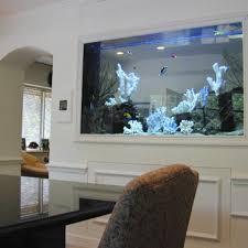 aquarium dans le mur cuisine construit dans le mur poisson poissons d aquarium mural