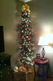 Sears Flocked Pencil Christmas Tree by Tall Slim Christmas Trees Christmas Lights Decoration