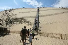 la dune du pyla ecologie vraie et ré