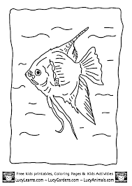 Angelfish Animal Coloring Pages 17 Peaceful Design 2740e8d854d9b940756183e96d5ba58b