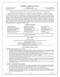 Sample Executive Resume Techtrontechnologies Com