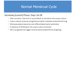 Uterine Lining Shedding Period by Normal And Abnormal Uterine Bleeding Ppt Video Online Download