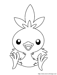 Coloring Pokemon Page Baby Bird