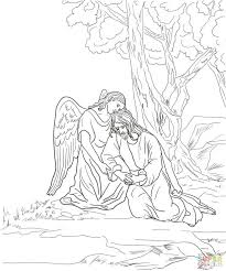 Garden Coloring Pages For Adults Secret Free Agony Page Fairy