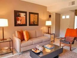 orange paint for living room peenmedia