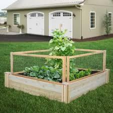 gardening vegetable gardening pest control raisedbeds com