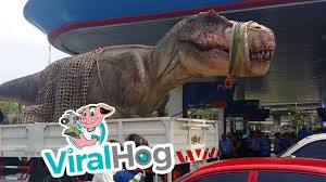 Giant T-Rex Arrives In Thailand || ViralHog - YouTube Jurassic Truck Trex Dont Call It A Hummer Trex Products 54197 Grille Insert Upper Class Mesh With Tape Launches The New Tour The Beast Shurtape Uk New Xmetal Grilles Truckin Magazine Planet Of Toysradio Control 110th Truck With Suspension 6 6391221bk Torch Series Center Bumper Mounts For 30 Led 631pcs World Park 2 Fit 75933 Tyrannosaurus Transport The T Rex Skin Ats American Simulator Dodge Ram 1997 Concept Youtube Photos 2017 Ford Super Duty By Wild Republic Mini Adventure Set Buy Online At Nile