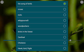 Scary Halloween Ringtones Free by Birds Calls Sounds Android Apps On Google Play