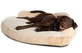 Types of Washable Dog Beds