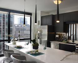 100 The Penthouse Chicago Luxury Apartments For Rent Rental Company