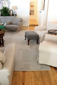 Carpet Charming Pet Friendly Carpet Design Home Depot Pet