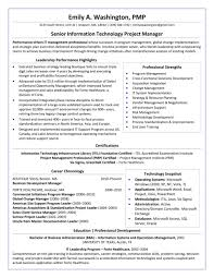 Resume Federal Examples Formidable Templates Template Format Government Resumes Business Example Fbi Outline Guide How Forma To A 2018 2017 In Word
