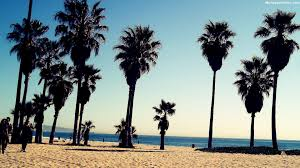 0 500x750 Tumblr Backgrounds Beachhipster Wallpaper Beach California 1920x1080 Venice Wallpapers Pictures Images