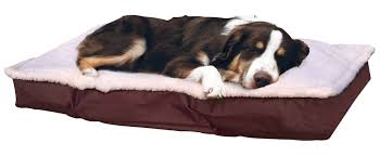 Chewproof Dog Bed by Furhaven Deluxe Outdoor Pillow Dog Bed U0026 Reviews Wayfair