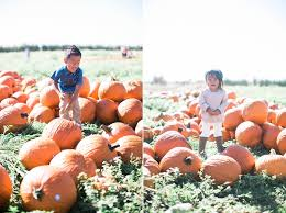 Aloun Farms Pumpkin Patch Address by Rascals At The Pumpkin Patch Ifloyd Photography
