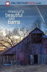 You Will Fall In Love With These 15 Beautiful Old Barns In ... Hand Crafted Custom Builtin Bookcases And Old Barn Wood Ceiling As Countys Old Barns Chimneys Vanish So Do Birds That Do It Again February Projects Barn Door Trying To Figure Out What I Want With It Restoration What Would You With An Open The Queso At High Point Farms Exterior Rustic Bride Yourself Birch Plywood Was Used To This Limited Budget Renovation Of 34 Best Tin Projects Images On Pinterest 269 Barns Country