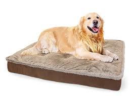 arlee home fashions dog bed korrectkritterscom