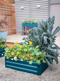 Metal Garden Beds - Corrugated Metal Garden Beds Primordial Solutions Home Facebook If You Ever Buy Plants Youll Love This Trick Wikibuy 30 Off Hudson Valley Seed Library Promo Codes Top 2019 View Digital Catalog Leonisa Discount Code Gardeners Supply Company Coupon Groupon 50 Promotion October Online Coupons Thousands Of Printable Midwest Arborist Supplies Penguin Stickers Chores Household Tasks Laundry Fitness Cleaning Gardening Planner Voucher Codes Food Save More With Overstock Overstockcom Tips Mygiftcardcom