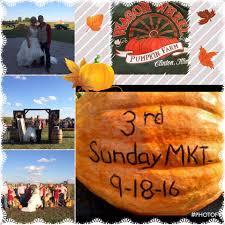 Pumpkin Patch Arthur Il by Wagon Wheel Pumpkin Farm Home Facebook