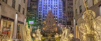 5 Of The Biggest Best Christmas Trees Across USA