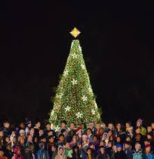 Longest Lasting Christmas Tree by Christmas Lights In The World