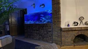 aquarium 720l in hessen niestetal aquarium und aquaristikzubehör günstig ebay kleinanzeigen