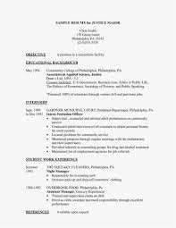 100 Resume Summary Examples Entry Level Format Executive