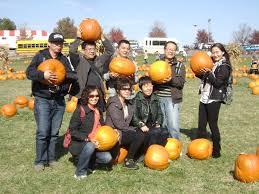 Siegels Pumpkin Farm by Pumpkin Farm Trip Uicois