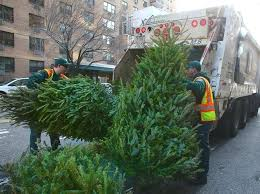Chicago Christmas Tree Disposal Dazzling Design Ideas Bags Home Depot Recycling