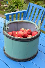The Magic Apple Tree Books on the Menu