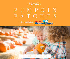 Ms Heathers Pumpkin Patch Louisiana by Pumpkin Patches On The Northshore Northshore Parent