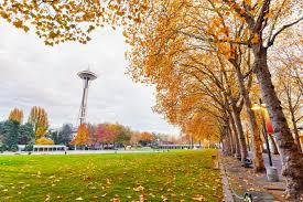 Seattle Pumpkin Patch by Engel U0026 Völkers Real Estate Engel U0026 Völkers Seattle Eastside U0027s Blog