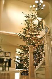 15 Foot Christmas Tree Bob Top Artificial Trees Ft Simspot