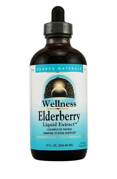 Source Naturals Wellness Elderberry Liquid Extract - 8 fl oz