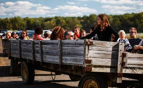 Pumpkin Patch Patterson Ny by 10 Awesome Hayrides Near Cleveland