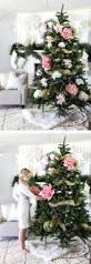 Christmas Tree Saplings For Sale Ireland by 110 Best Christmas Tree Images On Pinterest Christmas Time