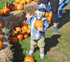 Pumpkin Patch Massachusetts by Ghostbusters U0027 A Pumpkin Patch And Hayrides Halloween In
