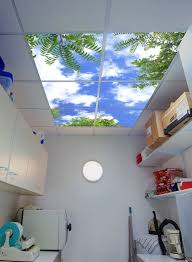 Home Depot Ceiling Light Panels by Fluorescent Light Covers For Kitchen How To Cut Plastic Ceiling