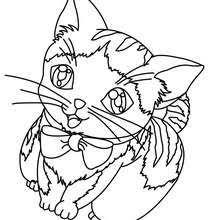 Happy Kitten Online Coloring