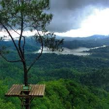 Hutan Wisata Kalibiru Yogyakarta