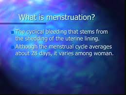 Uterine Lining Shedding Meaning by The Female Body U201cthe Plumbing U201d Ppt Download