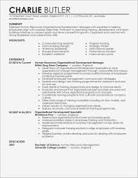 Information Technology Resume Sample Unique Best Organizational Development Example Samples Of
