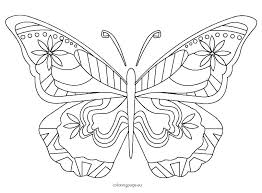 Cute Butterfly Coloring Pages Butterflies Color Monarch Page Life
